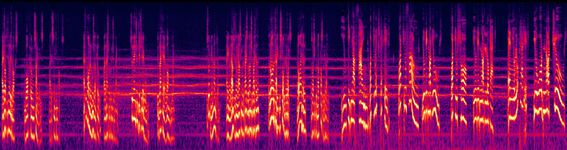 The Bagman - 8. The Gypsy Woman - Spectrogram.jpg