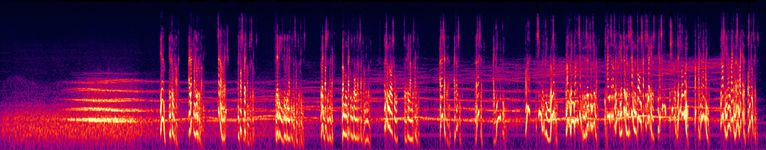 The Bagman - 2. Dreaming in Highgate Wood - Spectrogram.jpg
